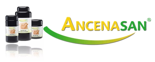 ancenasan-banner